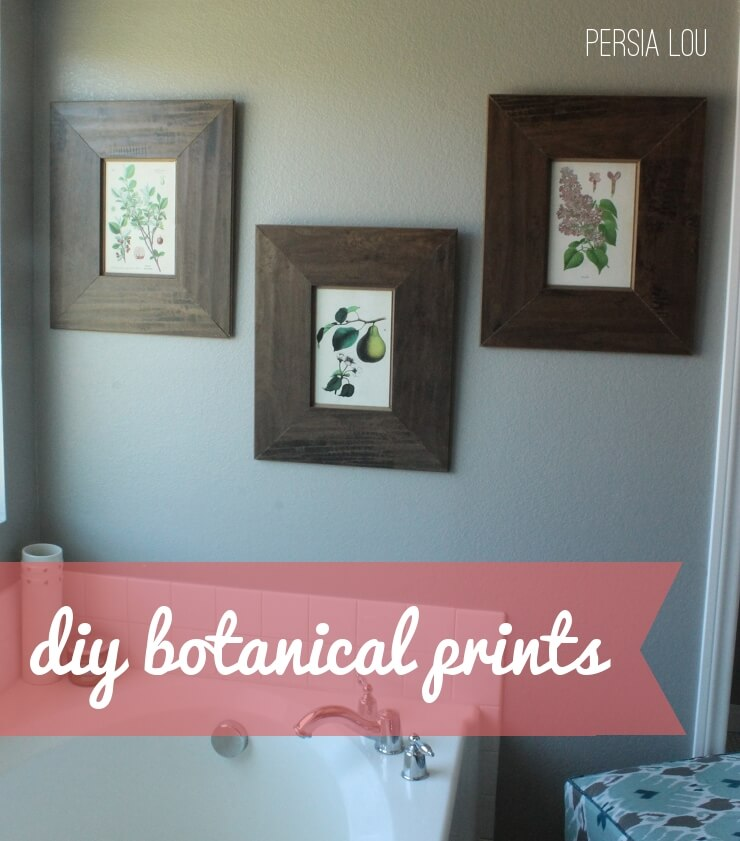 DIY (FREE!) Framed Botanical Artwork