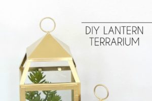 Lantern Terrarium at Darice