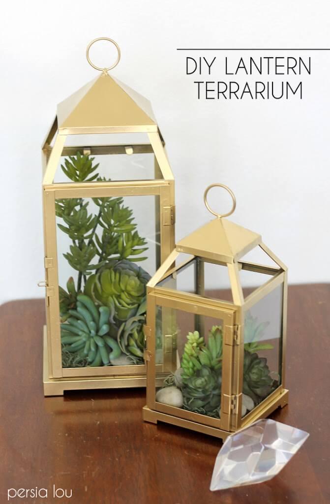 DIY Lantern Terrarium Tutorial