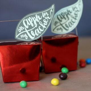 Apple Teacher Gift Idea with Printable