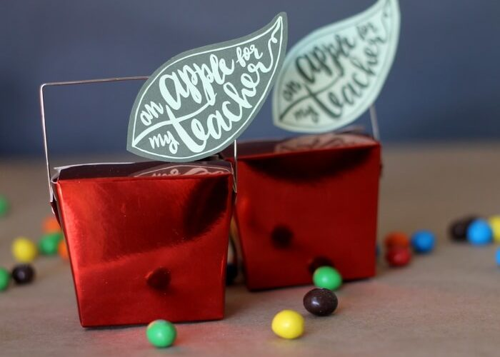 Apple Teacher Gift Idea with Printable