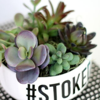 Make Your Own Simple DIY Succulent Planter
