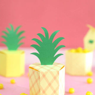 pineapple box 4