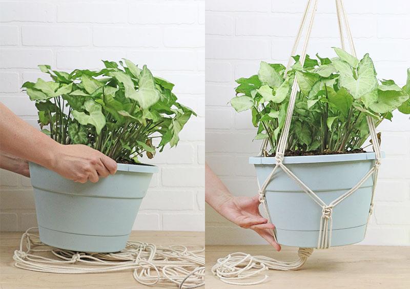 insert planter - diy macrame plant hanger