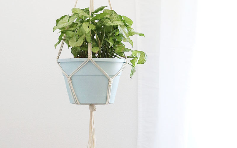 Simple DIY Macrame Plant Hanger