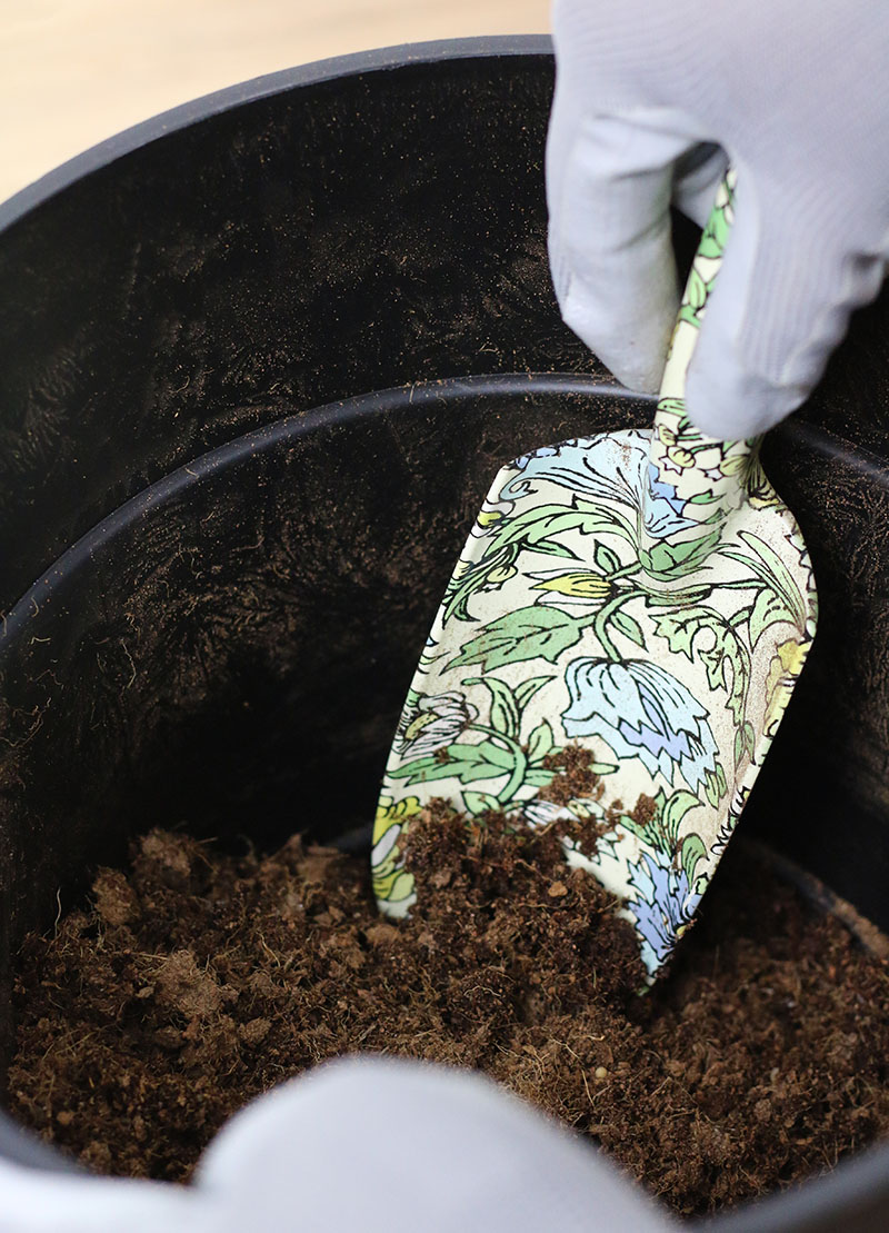 mix potting soil