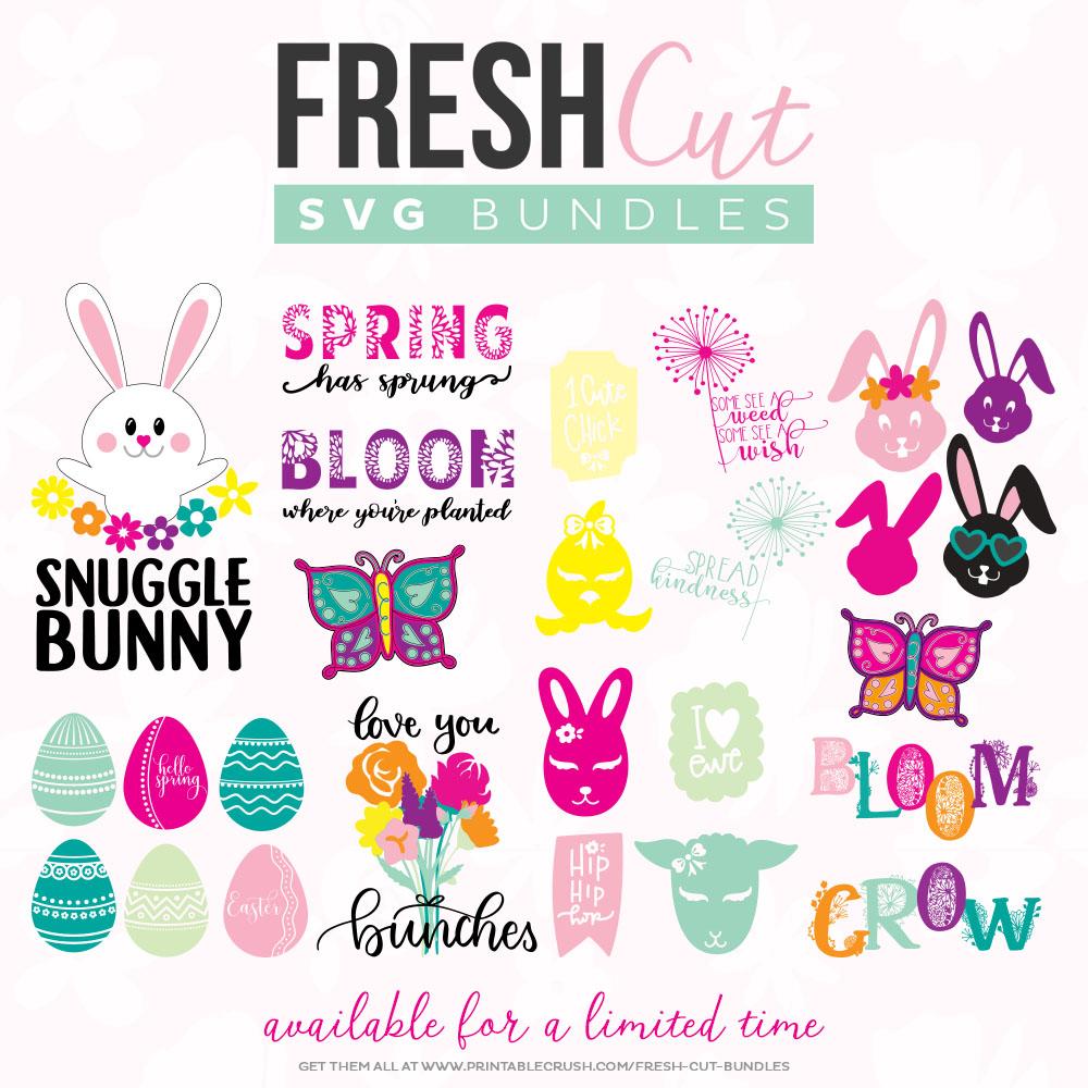 spring svg cut files