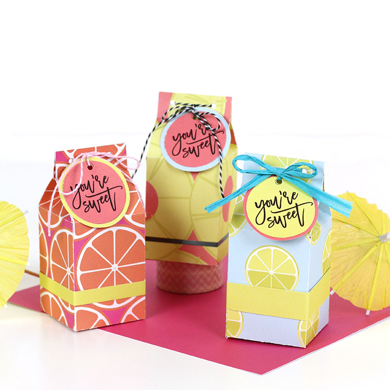 Free Printable Milk Carton Treat Box Template And Cut File Persia Lou