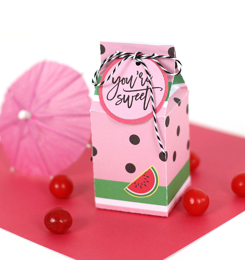 watermelon milk carton treat box cut file