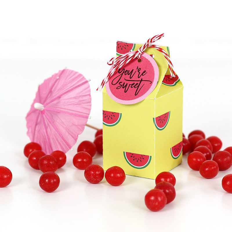 watermelon milk carton treat box template