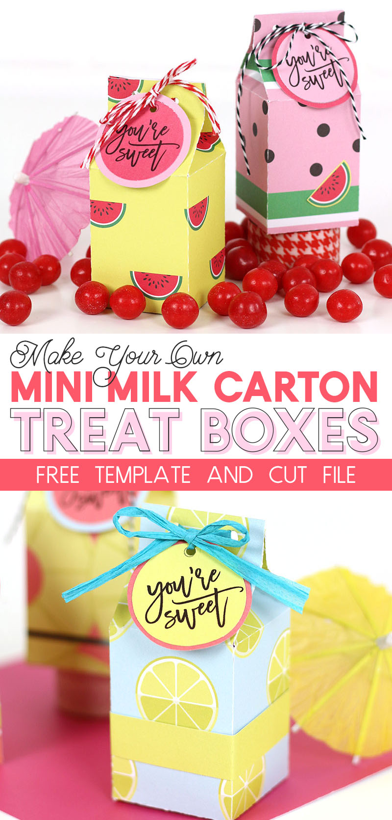 make your own mini milk carton treat boxes with this free template and cut file - perfect party favor box