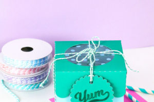 DIY Paper Treat Boxes with Cut Files for Silhouette or Cricut