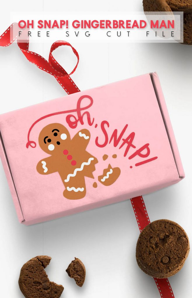 pink cardboard box with oh snap gingerbread man design on top. box is surrounded by chocolate cookies and a red ribbon